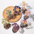 Gift Decorative Tabletop Home Office Decor Feng Shui Ornaments Money Tree