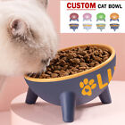 Personalized Custom Raised Dog Cat Bowl or Food and Water 15  Tilted Pet Feeder
