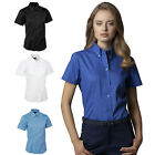 Ladies Short Sleeve Premium Oxford Formal Shirts Size 8 to 24 - WORK CASUAL 704