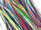 LONG THIN 100 REAL FEATHER HAIR EXTENSIONS GRIZZLY BRIGHT COLORS USA   SALE