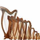 Rosewood Harp With Case and Learning Book, Lever Harp, Irish Harp, Celtic Harp,