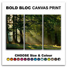 Forest Sunset LANDSCAPES  Canvas Art Print Box Framed Picture Wall Hanging BBD
