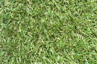 NATURAL GREEN LAWN 20MM THICK QUALITY ARTIFICIAL FAKE GRASS HARD WEARING