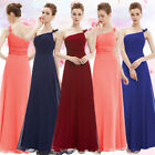 Chiffon One Shoulder Size 6 8 10 12 14 16 18 Bridesmaid Evening Gown Dress 09596