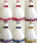 Ivory fuchsia red burgundy gold silver blue purple wedding flower girl dress