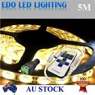 Waterproof 5M 3528LED Warm White DC 12V SMD Strips LED Strip Light+REMOTE DIMMER