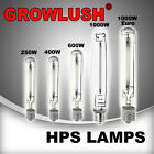 HID Grow Light bulb HPS Lamp Hydroponics Grow Light 250w 400w 600w 1000w