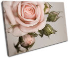 Rose shabby chic Vintage SINGLE CANVAS WALL ART Picture Print VA