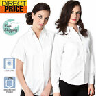 Ladies Womens Shirts Blouse White Oxford Business Office Long Short Sleeve top