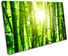 Bamboo Shoots Floral SINGLE CANVAS WALL ART Picture Print VA