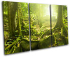 Mystical Forest Trees Landscapes TREBLE CANVAS WALL ART Picture Print VA