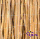 Best Fences - BAMBOO SCREENING ROLL Screen Fencing Garden Fence Panel Review