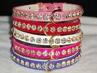 Designer Dog Collar small Pet Bling Crystal Jewels metallic hot & bright colors!