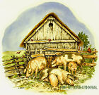 A07 ~ Pig Family Ceramic Decals, 4 sizes, 2 designs to choose from, Hogs, Farm image