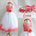 Charming Coral/White rose petals wedding flower girl dress FREE CROWN all sizes