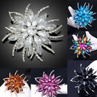 Gorgeous big Flower 6.2cm wedding prom Women Brooch Pin Crystal Glass gifts xmas