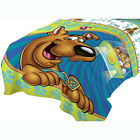 Scooby-Doo Bedding and Wall Stickers - Boy Bedroom Accent Sheet Decal  PICK ITEM