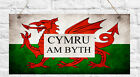 Personalised Welsh Cymru am byth Coeso Cwtch Any message Wales Flag Plaque Gift