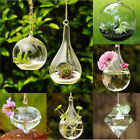 Hanging Glass Flower Plant Vase Terrarium Container Home Garden Wedding Decor