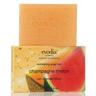 Evodia Bath and Body Works Exfoliating Bar Soap Beauty Scented Body Cleansing
