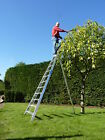 hedge trimming ladders
