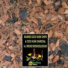 SW PROMOTION: Buy 1 get 2 Orchid Potting Mix Orchid Bark Coco Husk ROSSIOGLOSSUM