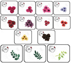 "My Treasured Kutz - L@@K ALL ""Flowers/Leaves"" DIE UNDER 1 LISTING - Easy Shop!"