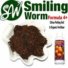 SMILING WORM F4 - Organic Potting Soil Mix + Charcoal for Dwarf Apple Fruit Tree