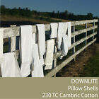 DIY - Pillow Shells - 230 TC Cambric Cotton (Down Proof) By DOWNLITE