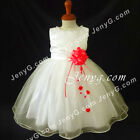 NLIR2 Baby Infants Wedding Cocktail Evening Birthday Formal Pageant Gown Dress