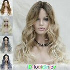 Long Wavy Parted middle Ombre Lace Front Women Natural gradient wig