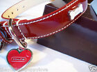 NEW COACH RARE HEARTS & BONES RED PATENT SMALL LEATHER DOG COLLAR S RED HEART