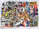 Внешний вид - Pack of 100, 200, 300, 500 Random Skateboard Notebook Laptop Vinyl Sticker