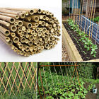 4ft Heavy Duty Extra Strong Professional Bamboo Garden Canes Plant Support Thick