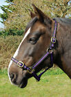 CLEARANCE Various Nylon Headcollar for Horse or Pony Lots of Colours Sizes £4.99