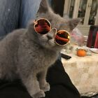 US Pet Dog Cat Glasses For Pets Little Eye-wear Puppy Sunglasses Photos Props