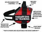Doggie Stylz THERAPY DOG IN TRAINING Dog Harness Vest Nylon 2 removable patches