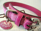 NEW COACH RASPBERRY HOT HOT PINK SMALL  DOG COLLAR S LAST ONE one ON SITE