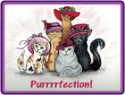 LONG SLEEVE PURPLE T-SHIRT CUSTOM RED & PINK HAT KITTY CAT DESIGN SM-XL