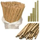 Natural Bamboo Wooden Garden Thick Canes Plant Stick Cane Strong 2/3/4/5/6/7FT