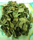 Dry Mulberry Leaves for Shrimps and Fish Organic Food Non GMO up to 30 Leaves