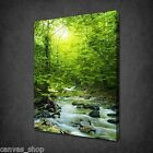 MOUNTAIN STREAM FOREST SUN MODERN WALL ART CANVAS PRINT PICTURE READY TO HANG