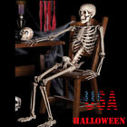 New BARNEY SKELETON--Human Skull Cheap Halloween Prop Building Decoration