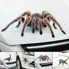 Vivid 3d Spider Crawling Sticker Car Door/rear Trunk/window/bumper Vinyl Decal