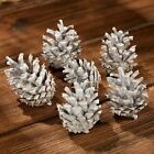 Natural Pine Cones 20-100pcs Christmas Decorations Quality Pinecone's UK Stock