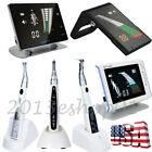 Dental Obturation Pen / Wireless Endo Motor Treatment /Root Canal Apex Locator