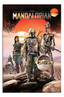 Laminated Star Wars Mandalorian Group Poster Official Licensed 24x36""
