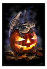 Anne Stokes Halloween Trick Or Treat FRAMED CORK PIN BOARD With Pins | UK Seller