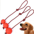 Training Pet Puppy Chew Toys Pet Puppy Toys Solid Rubber Ball Dog Chew Toy