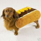 Casual Canine MUSTARD HOT DIGGITY DOG Pet Halloween Costume  S M L